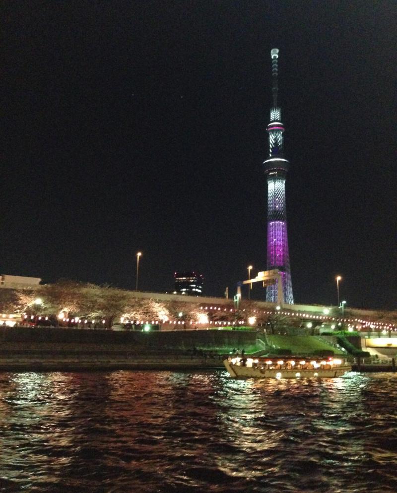 yozakura1