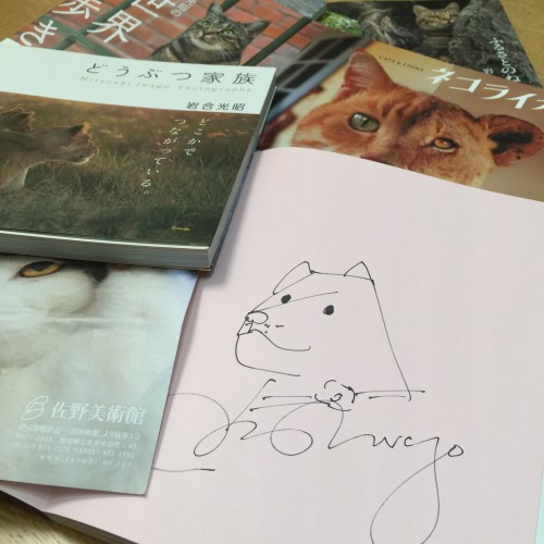 動物写真家 岩合光昭さん 写真展「岩合光昭の世界ネコ歩き」愛ある優しい世界に触れて