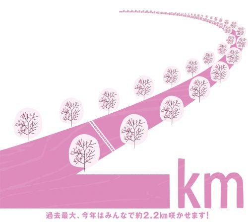 """""""冬の桜"""" 目黒川の幻想的なイルミネーション。【五反田サロンでの施術】"""