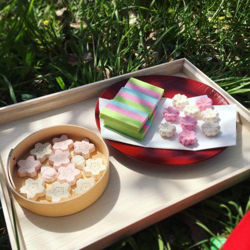 お花見野点ピクニック@代々木公園 (春の夢が叶った日)