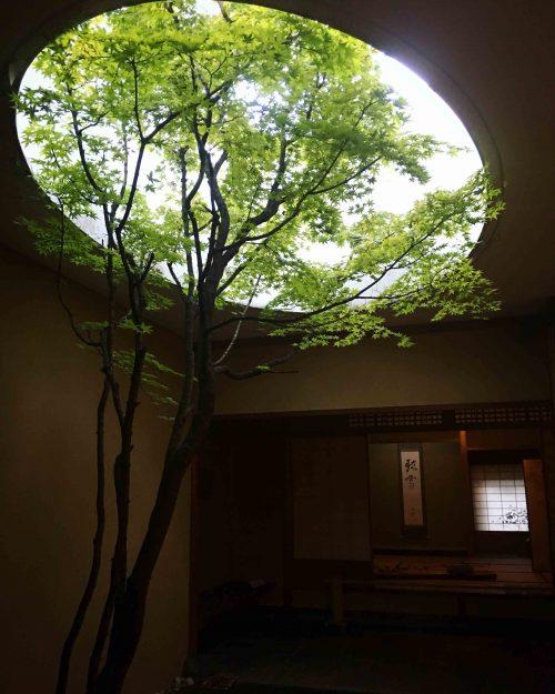京都 何必館
