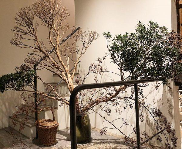 お店のご近所にあるお花屋さん、kojien(小路苑)のアレンジメント