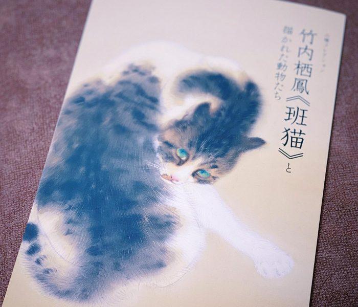 モフモフに癒される【東京・山種美術館】「竹内栖鳳《班猫》とアニマルパラダイス」